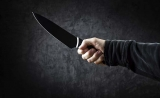 Man butchers wife, attempts suicide